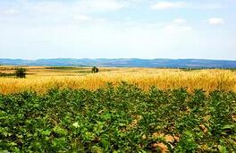 全国各地修改《农村土地承包法》工作已启动
